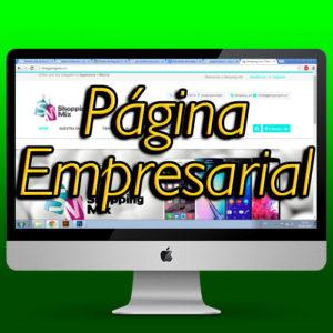 pagina empresarial