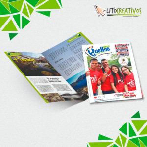 revistas litografia Medellin litocreativos