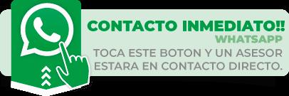 contacto directo whatsapp